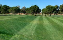 Tee-inverso-del-Campo-practicas-(Marzo-2015)