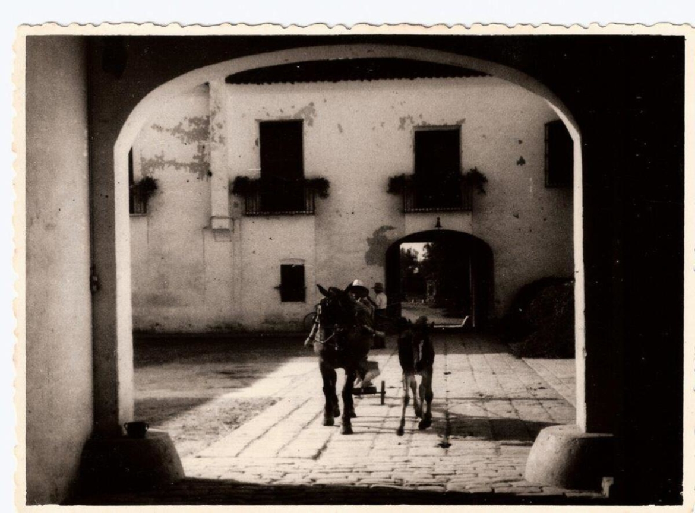historia_Foto-Antiga-2.jpg